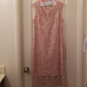 Todashi Shoji Pink Dress